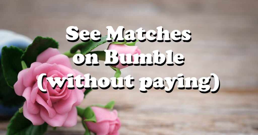 see matches on bumble without paying